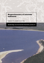 Biogeochemistry of Intertidal Sediments