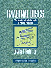 Imaginal Discs