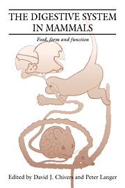 The Digestive System in Mammals