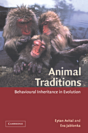 Animal Traditions