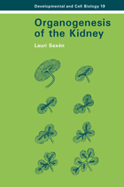 Organogenesis of the Kidney