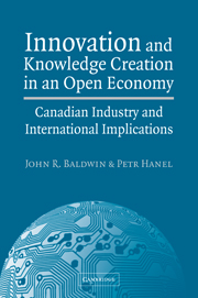 Innovation and Knowledge Creation in an Open Economy