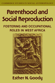 Parenthood and Social Reproduction