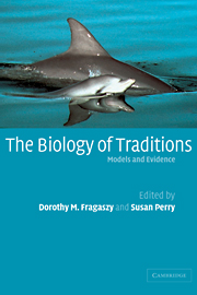 The Biology of Traditions