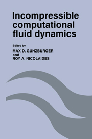 Incompressible Computational Fluid Dynamics