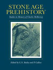 Stone Age Prehistory