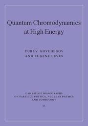 Quantum Chromodynamics at High Energy