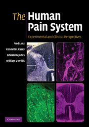 The Human Pain System