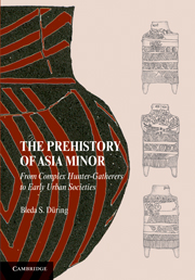 The Prehistory of Asia Minor