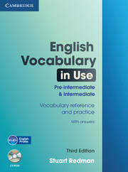 English Vocabulary in Use: Pre-intermediate and Intermediate 3rd Edition