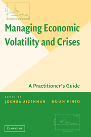 Managing Economic Volatility and Crises