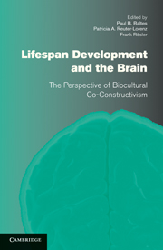 Lifespan Development and the Brain