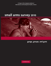 Small Arms Survey 2010
