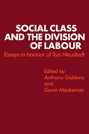 Social Class and the Division of Labour
