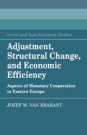 Adjustment, Structural Change, and Economic Efficiency