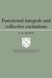 Functional Integrals and Collective Excitations