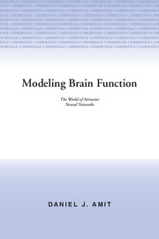 Modeling Brain Function