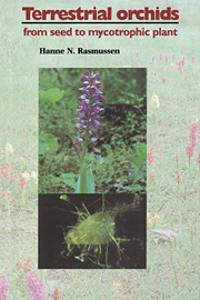 Terrestrial Orchids