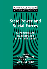 State Power and Social Forces