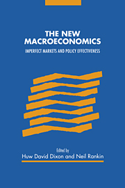 The New Macroeconomics