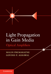 Light Propagation in Gain Media
