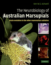 The Neurobiology of Australian Marsupials