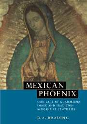 Mexican phoenix our lady guadalupe image and tradition across five mexican phoenix our lady of guadalupe image and tradition across five centuries fandeluxe Choice Image