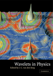 Wavelets in Physics