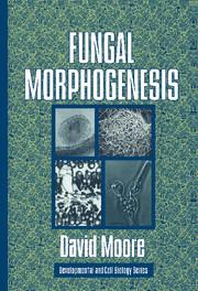 Fungal Morphogenesis