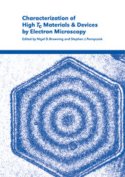Characterization of High Tc Materials and Devices by Electron Microscopy