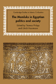 The Mamluks in Egyptian Politics and Society