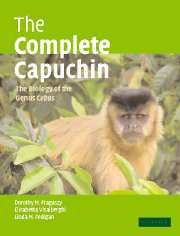 The Complete Capuchin