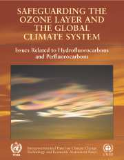 Safeguarding the Ozone Layer and the Global Climate System