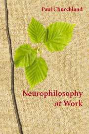 Neurophilosophy at Work