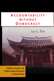 Accountability without Democracy
