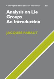 Analysis on Lie Groups
