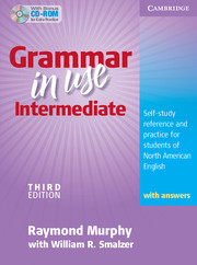 Grammar in Use Intermediate 3rd Edition