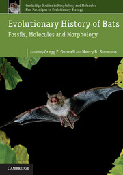 Evolutionary History of Bats