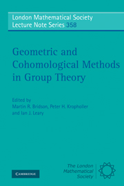 Geometric and Cohomological Methods in Group Theory