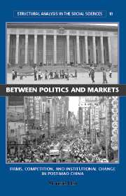 Between Politics and Markets