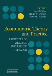 Econometric Theory and Practice