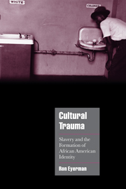 Cultural Trauma