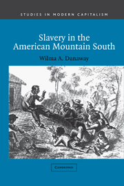 Slavery in the American Mountain South