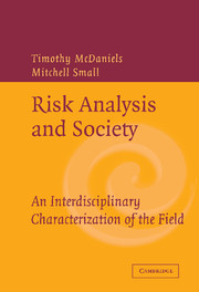 Risk Analysis and Society