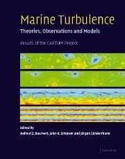 Marine Turbulence