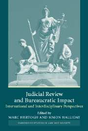 Judicial Review and Bureaucratic Impact
