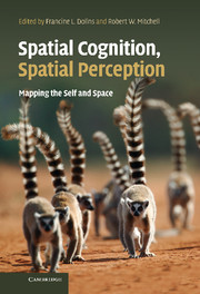 Spatial Cognition, Spatial Perception