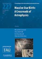 Massive Star Birth (IAU S227)