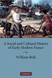 A Social and Cultural History of Early Modern France
