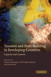 Taxation and State-Building in Developing Countries
